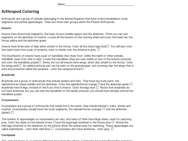 Arthropod Coloring 9th 12th Grade Worksheet – Arthropod Worksheet