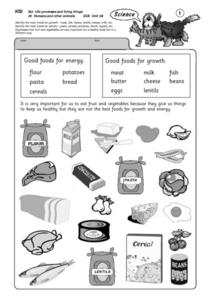 Good Foods Lesson Plan
