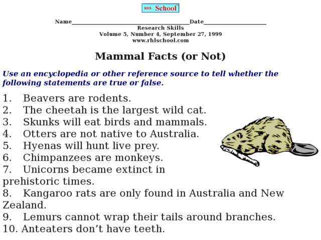 Mammal Facts (or Not) 3rd - 5th Grade Worksheet | Lesson Planet
