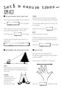 Let's Measure Trees Worksheet