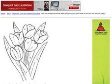 Coloring Tulips by Numbers Worksheet
