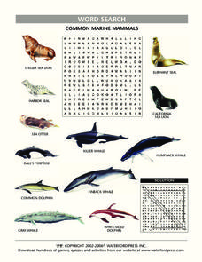 Common Marine Mammals Word Search Lesson Plan