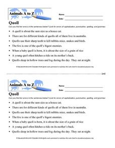 Animals A to Z: Quoll Worksheet
