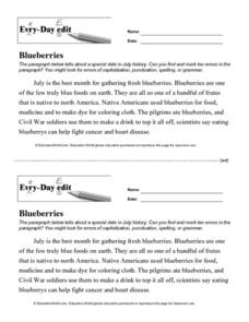 Every Day Edit - Blueberries Lesson Plan