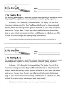 Every Day Edit - The Seeing Eye Worksheet