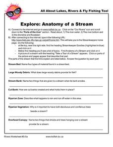 Anatomy of a Stream Worksheet