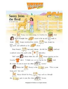 """Sunny Joins the Herd"" by Jean Martin Flynn Worksheet"