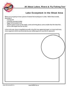 Lake Ecosystem in the Shoal Area Worksheet