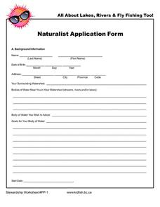 Naturalistic Application Form Worksheet