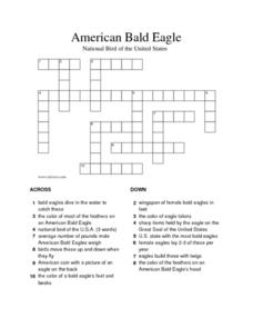American Bald Eagle: National Bird of the United States Worksheet