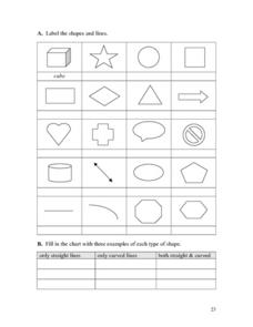 Label the Shapes and Lines Worksheet