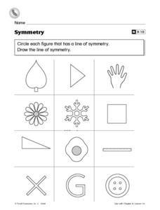Symmetry - Draw the Line of Symmetry Worksheet