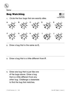Bug Watching Worksheet