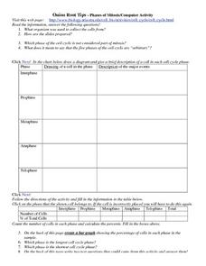 Onion Root Tips- Phases of Mitosis Worksheet