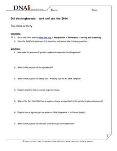 Gel Electrophoresis Simulation Worksheet