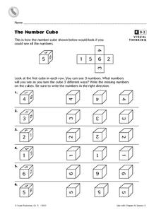 The Number Cube Worksheet