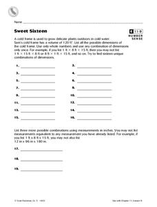 Sweet Sixteen Worksheet