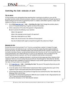 Controlling the Code: Molecules at Work Worksheet