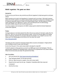 Model Organisms: The Genes We Share Worksheet