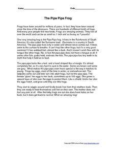 The Pipa Pipa Frog Worksheet