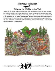 Watching for Wildlife on the Trail Worksheet