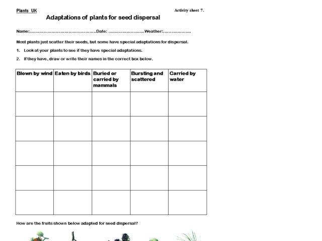adaptation worksheet Termolak – Adaptations Worksheet