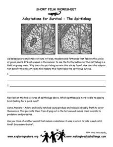 Adaptations for Survival--The Spittlebug Worksheet