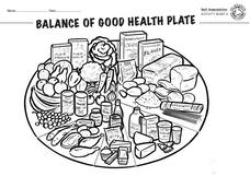 Balance of Good Health Plate Lesson Plan