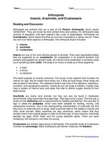 worksheet arthropods insects arachnids and crustaceans lesson plans worksheets. Black Bedroom Furniture Sets. Home Design Ideas