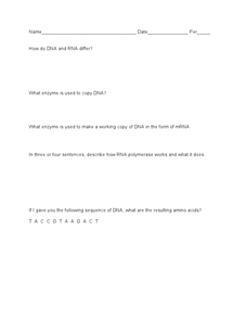 DNA Worksheet