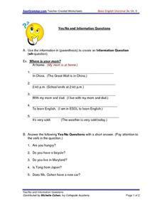 Yes/No Information Questions Worksheet