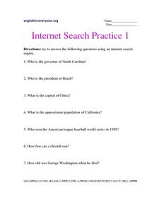 Internet Search Practice Worksheet