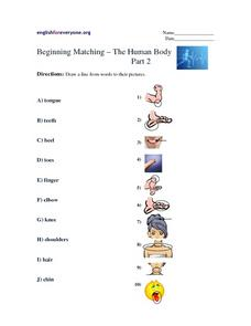 Beginning Matching-- The Human Body Part 2 Worksheet
