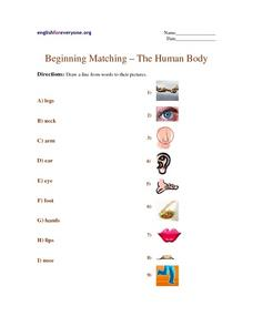 Beginning Matching - The Human Body Worksheet
