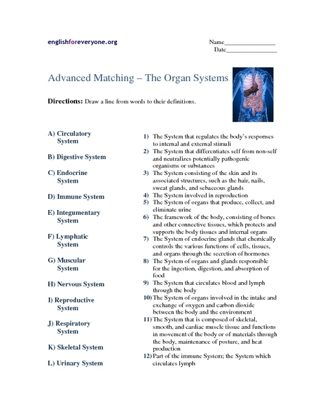 Immune System Worksheets Reviewed By Teachers