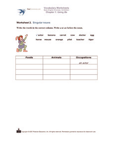 Articles A /An and Noun Classification Worksheet