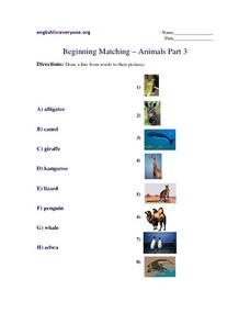 Beginning Matching-- Animals Part 3 Worksheet