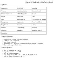 The Breath of Life Review Sheet Worksheet