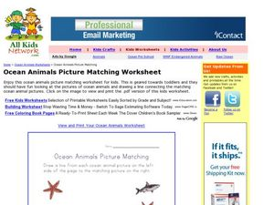 Ocean Animals Picture Matching Worksheet Worksheet