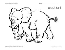 Elephant Coloring Page Worksheet