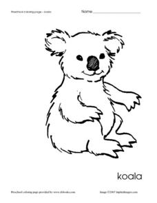 Preschool Coloring Page - Koala Worksheet