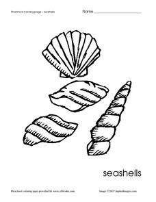 Preschool Coloring Page - Seashells Worksheet