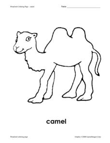 Preschool Coloring Page - Camel Worksheet