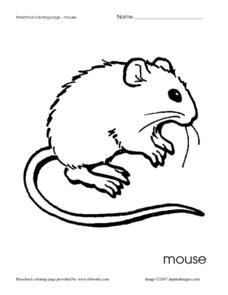 Preschool Coloring Page - Mouse Worksheet