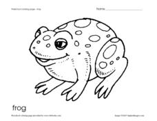 Preschool Coloring Page - Frog Worksheet