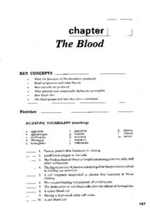 The Blood Worksheet