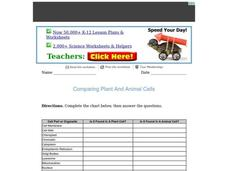 Comparing Plant and Animal Cells Worksheet