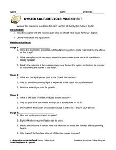 Oyster Culture Cycle Worksheet Lesson Plan