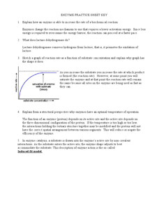 Enzyme Practice Sheet Key Worksheet