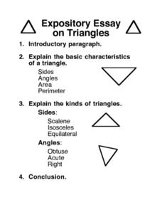 Expository Essay on Triangles Worksheet